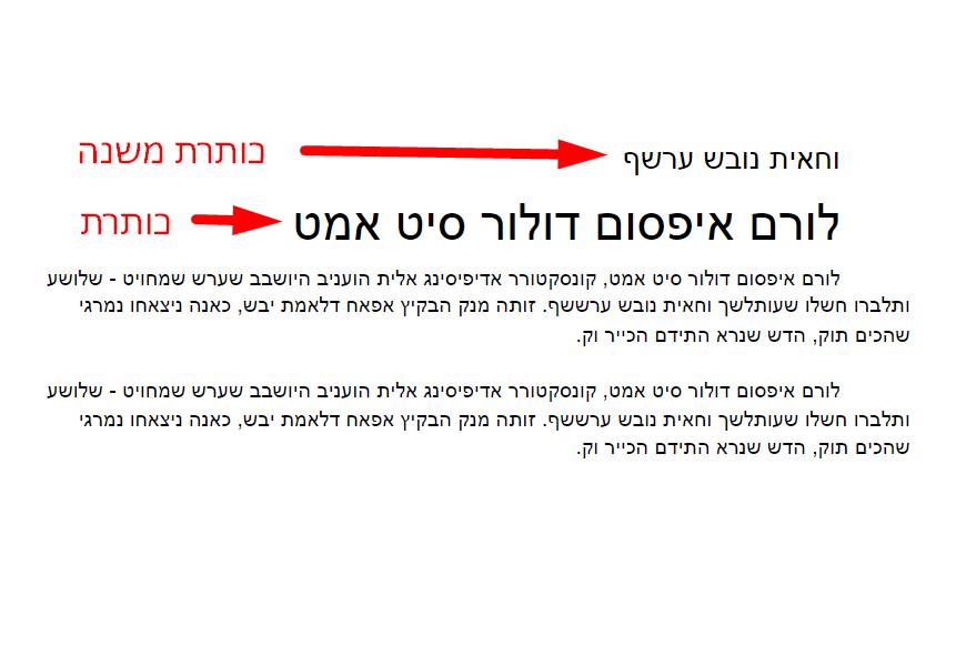 כללים בכתיבת תוכן לדף נחיתה או עמוד ראשי לאתר
